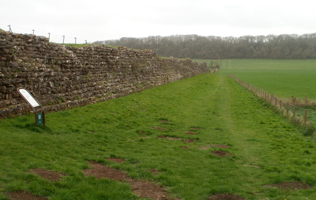 Woodland view along the ancient west wall, Caerwent