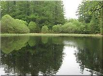 NX4465 : Little Bruntis Loch by Ann Cook