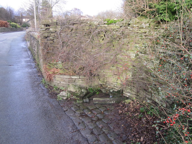 Oak Lane spring, Kerridge, Bollington