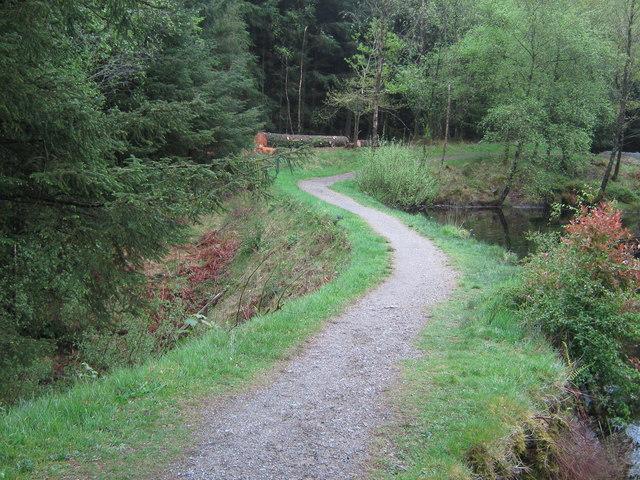 A path across an old dam