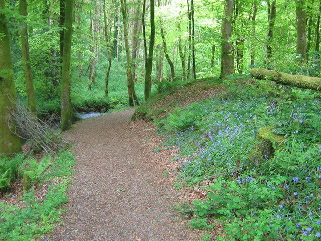 A path beside Bush Burn