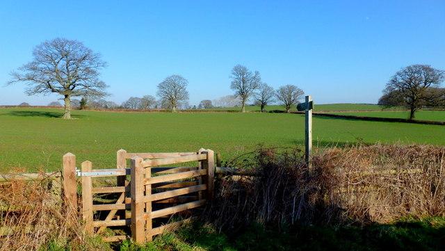 Path across a field