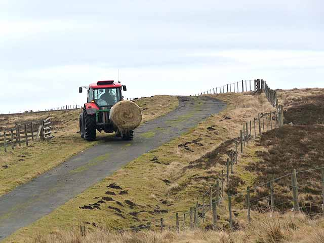 Tractor at Hareshaw Head
