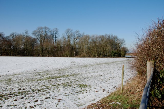Snow in front of Bullmoor Lane Covert, Bullmoor Lane