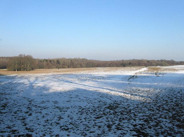 Church Field (3)