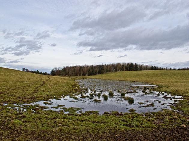 Farmland at West Conland