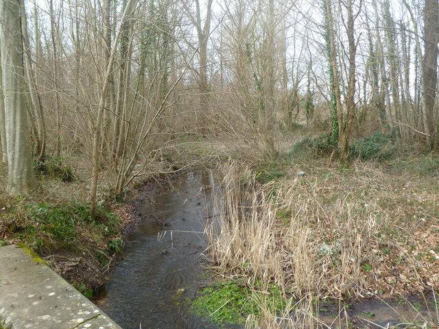 Moor Crichel, drain