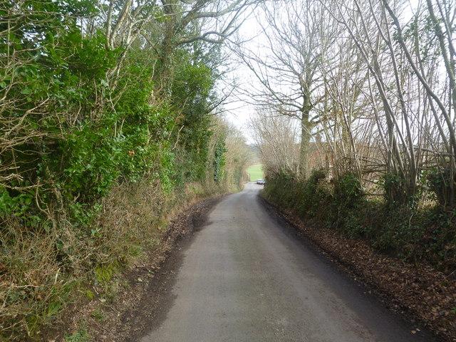 Witchampton, Lawrence Lane