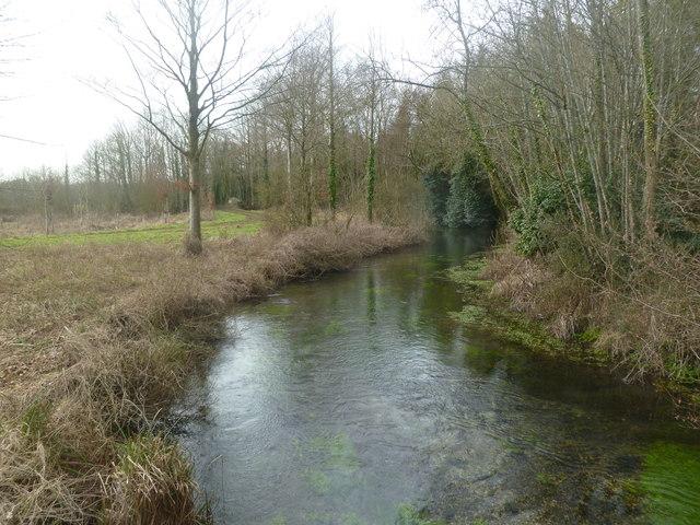 Moor Crichel, River Allen