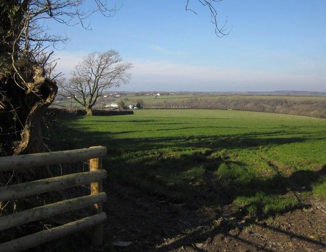 Field, Westmanton