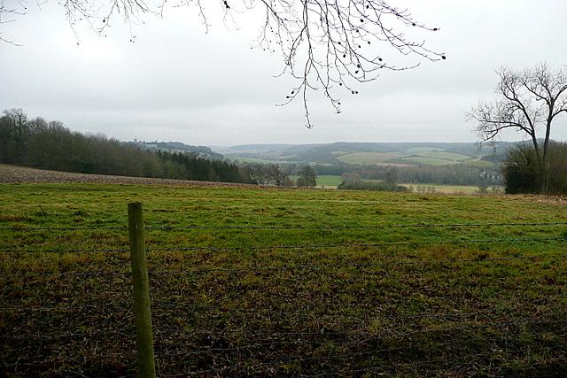 View from Toweridge Lane