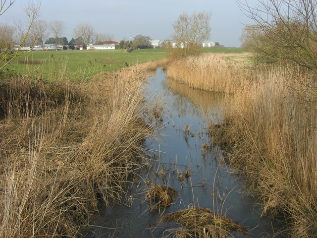 The river Cale