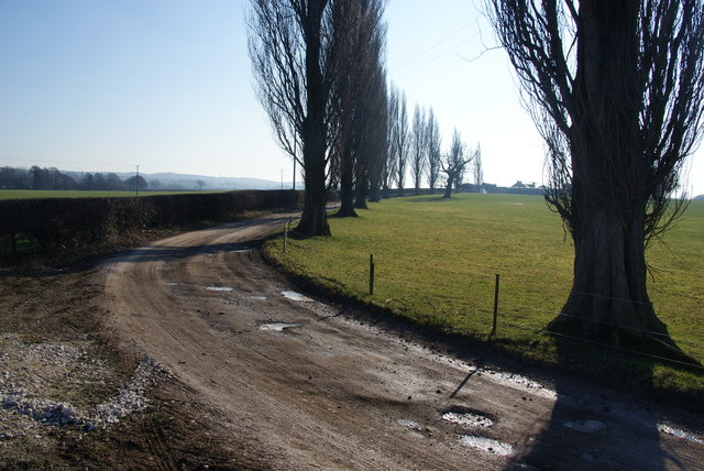 Track to Plashes Farm