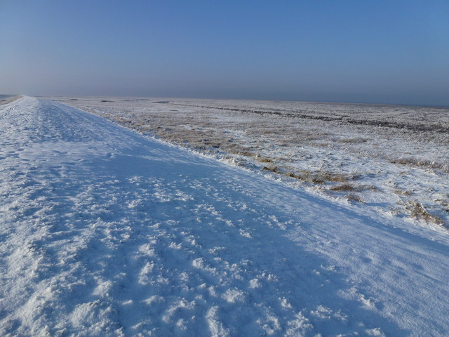The Wash coast in winter - The frozen planet