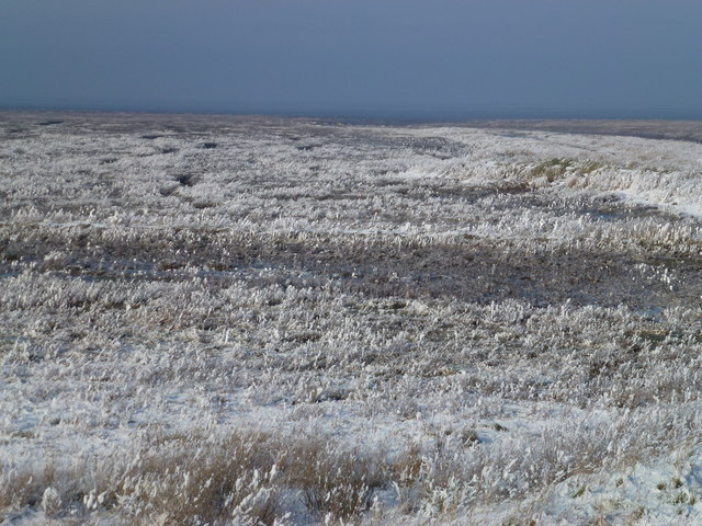 The Wash coast in winter - White salt marsh and blue sky