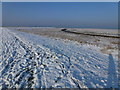 TF4034 : The Wash coast in winter - Foot prints in the snow by Richard Humphrey