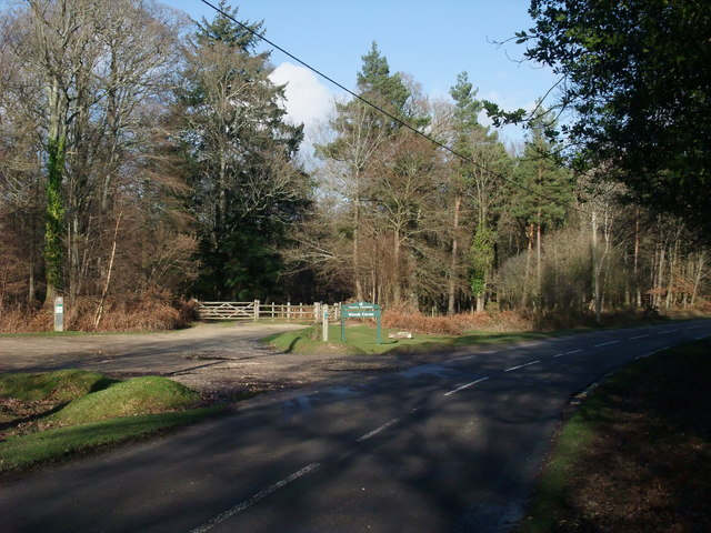 Woods Corner
