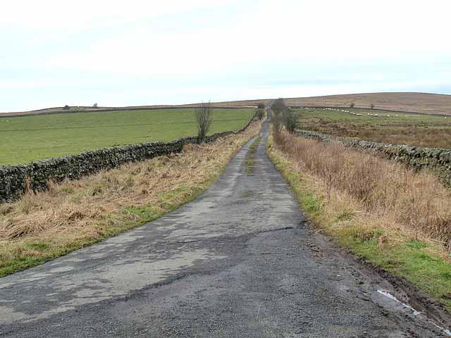 The road to Corsenside Common
