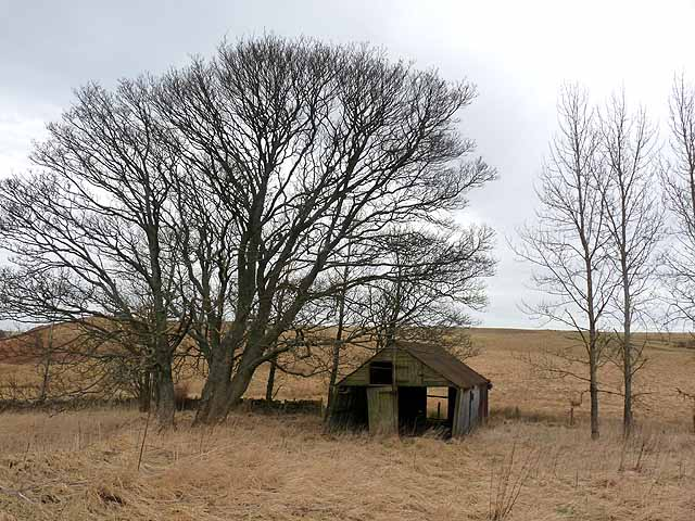 Old shed at Heathery Hill