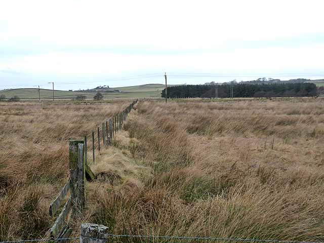 Valley floor near Monkridge