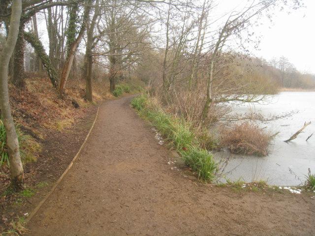 Path by Fleet Pond (north edge)