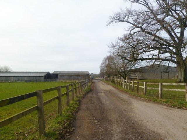Witchampton, farm entrance