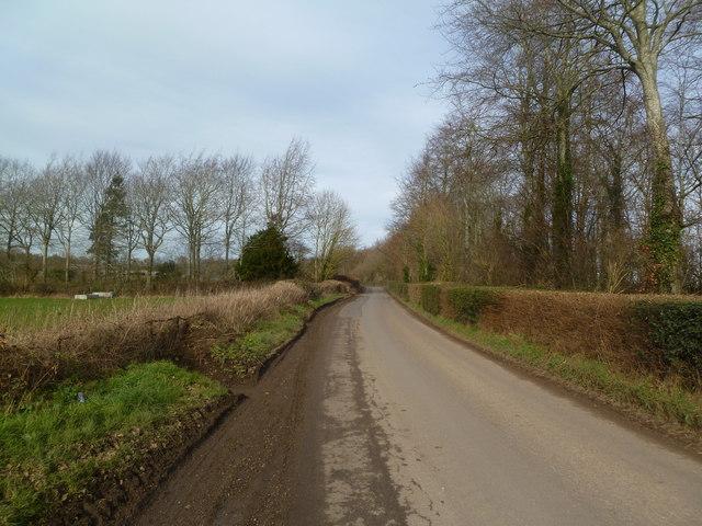 Witchampton, Crichel Lane
