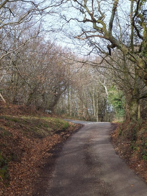 The top of Shepherds Lane