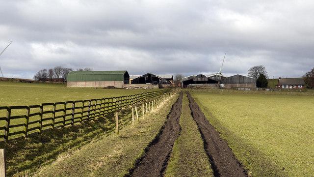 Farm track rising to South Shields Farm