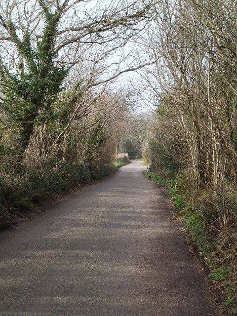 Road going west on Holcombe Down