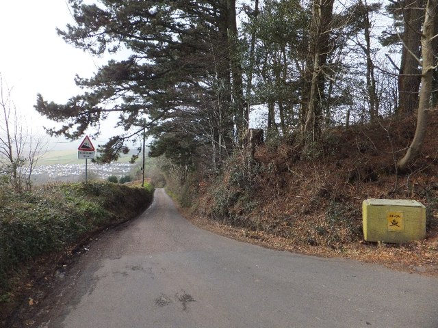 Road to Buddleford from Holcombe Down