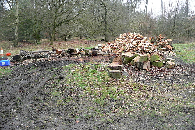 Woodland clearance