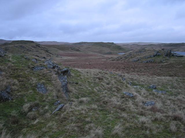 Moorland west of Llyn Egnant