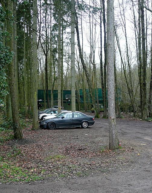 Sandage Wood
