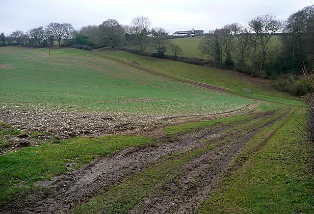 Towards Pyatts Farm
