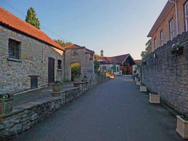 Glastonbury - Abbey Museum