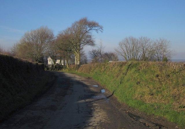 Lane at Higher Bradaford