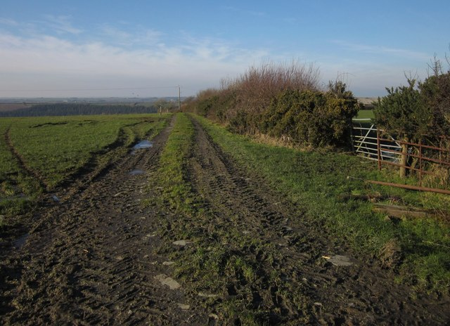 Field track near Higher Bradaford