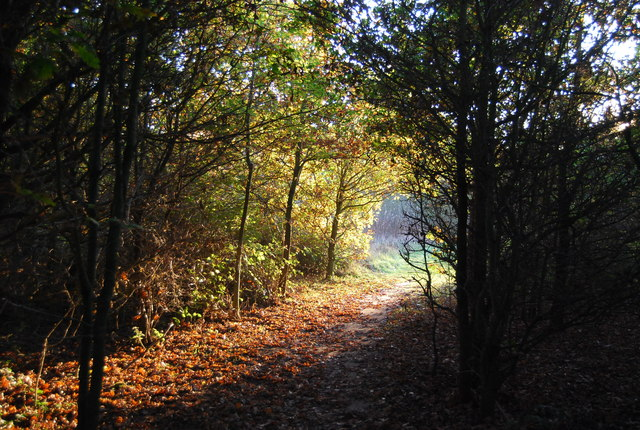 Footpath to Sturry