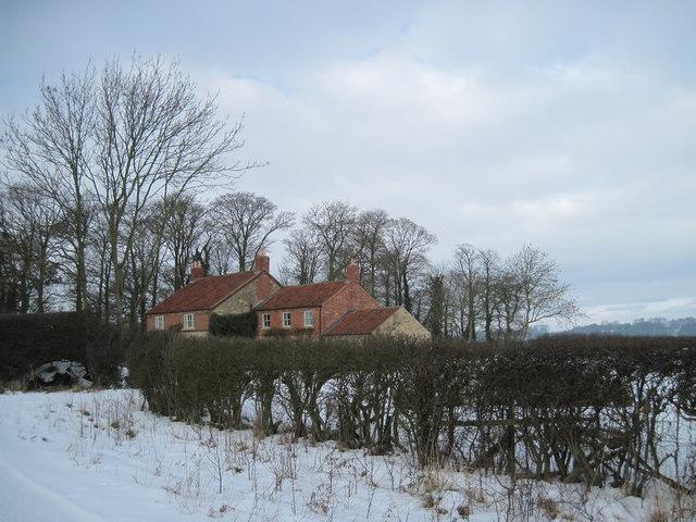 Cottage  on  Welburn  Lane  (Track)
