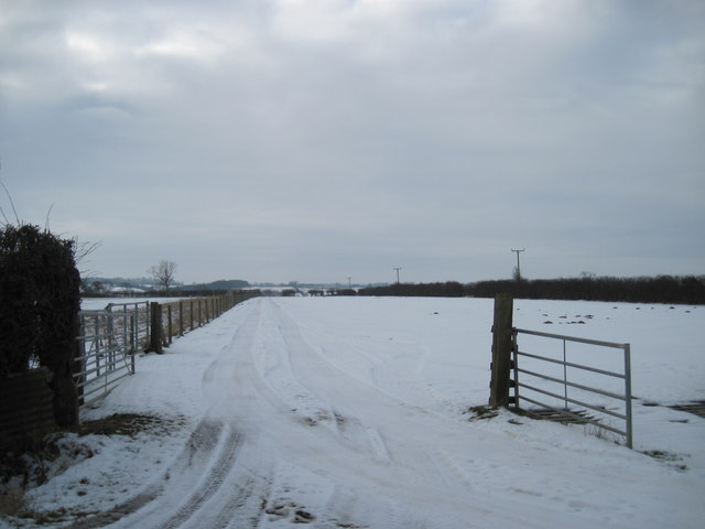 Track  to  Westerdale  Farm