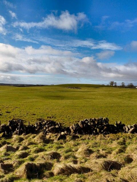 Farmland near Low Glasnick