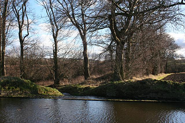 Canal Weir