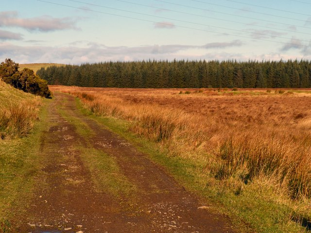 Track to Blairderry