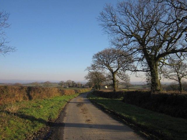 Lane to Upcott Barton