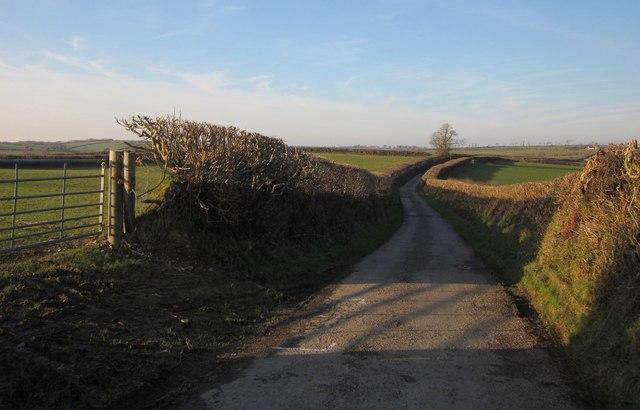 Lane near Nethercott
