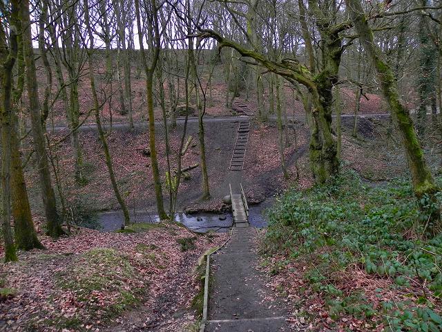 Borsdane Wood