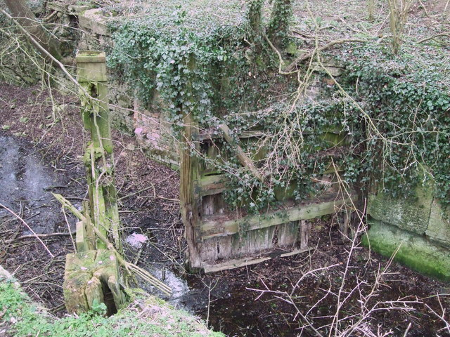 Derelict lock gate, Thames and Severn Canal