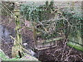 SU1998 : Derelict lock gate, Thames and Severn Canal by Vieve Forward