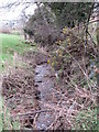 J1628 : Small stream viewed from the Ballykeel Road by Eric Jones